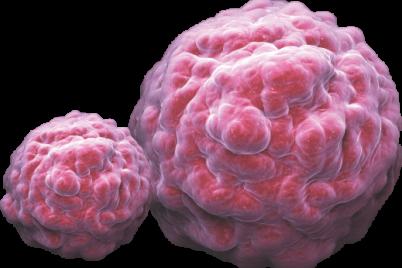 Medicina-Regenerativa-y-el-uso-de-Celulas-Madre-1.png