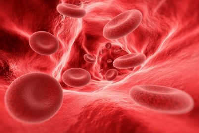 blood-cells-in-the-vein-PH2RLYD-small.jpg